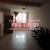 phu loi d1.png