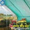 lưới che nắng trong nông nghiệp