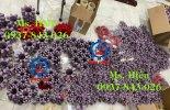Vong dem Rotex ktr, Spider Rotex GS, rubber insert coupling, element coupling Rotex GS, Rotex ...jpg