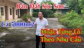 ban-dat-soc-son-1.jpg