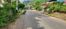 800 ( Bãi Sậy Mường Sang ) .jpg