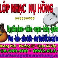 Trung tâm nhạc cụ Nụ Hồng