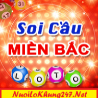 nuoi lo khung 247