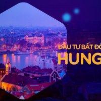 dau-tu-Hungary.jpg