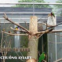 Lưới thép hàn làm chuồng Aviary nuôi chim